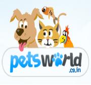Bumper offer on branded Pedigree dog food in Delhi & NCR